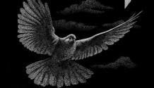 "Soutěž o nové album ""Love, Peace and Freedom … and Death"" kapely Last Time! (UKONČENO)"
