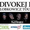 Kapela Divokej Bill odstartuje své turné již tento čtvrtek v Plzni!
