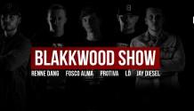 Blakkwood show v Březnici