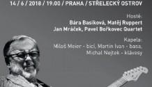 Michal Pavlíček odehraje speciální koncert na Střeleckém ostrově