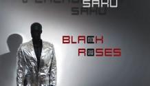 Black Roses: V zrcadlovém saku (2010)