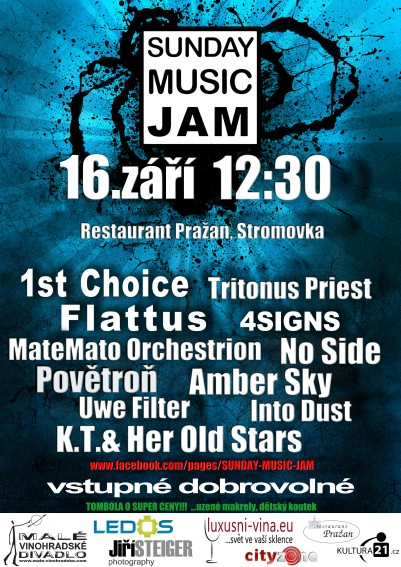 Sunday Music Jam ve Stromovce!